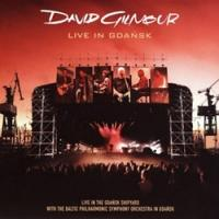 David Gilmour Live in Gdansk LP