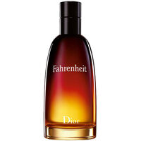 Fahrenheit de Christian Dior Eau de Toilette 100ml Masculino