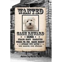 Maltese Dog Wanted Poster: Isometric Dot Drawing Paper Notebook Featuring 120 Pages 6x9