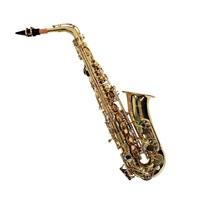 Saxofone Alto Shelter SFT 6430L Laqueado com Estojo Completo