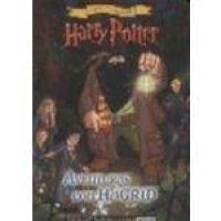 Harry Potter - Aventuras Con Hagrid - Copia Y Colorea - Sudamericana