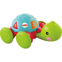 Empurra Tartaruga Fisher Price Y8652