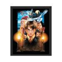 Quadro Decorativo Harry Potter Filme