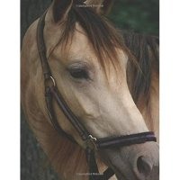 Horseback Rider College Ruled Composition Notebook: For High School or College Students