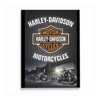 Placa De Metal Tecnolaser Harley Logo