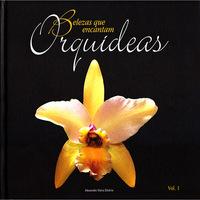 Orquídeas:Belezas Que Encontram