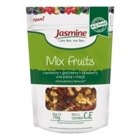 Mix de Frutas Cranberry, Goji Berry, Blueberry, Uva e Maçã Desidratadas Jasmine 70g