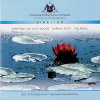 Jean Sibelius 2007