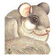O Esquilo-cinzento - Col. Animais Recortados