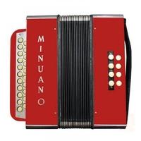 Acordeon 8 Baixos Minuano 8/21 - Vermelho - Acompanha Bag E Alça