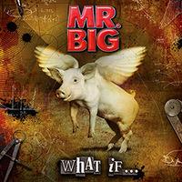 Mr. Big - What If