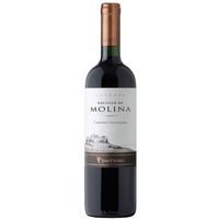Vinho Interfood Castillo de Molina Cabernet Sauvignon 750ml