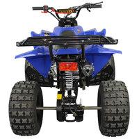 Quadriciclo Sport Atv 125cc Freio A Disco Gasolina Partida Elétrica 4 Tempos Tatv125